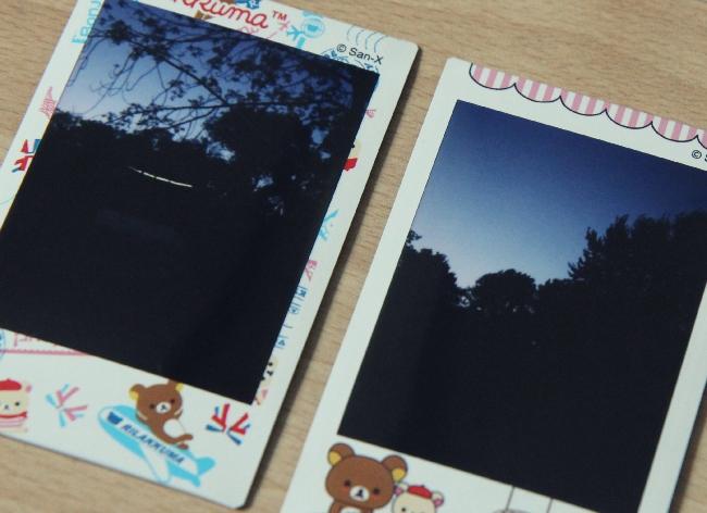Polaroid foto Vondelpark