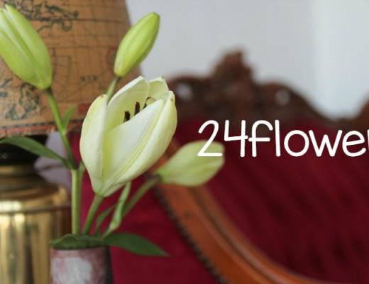 24flower